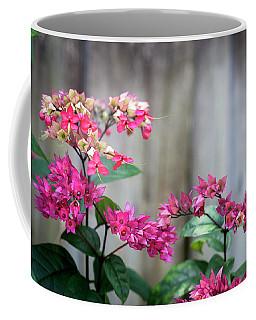 Bleeding Heart Flowers Clerodendrum Painted  Coffee Mug