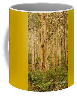 Boranup Forest II Coffee Mug by Cassandra Buckley