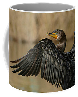 Coffee Mug featuring the photograph Drying Out by Fraida Gutovich