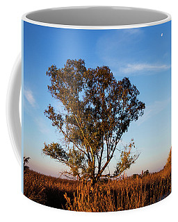 Sunrise In The Ditch Burlamacca Coffee Mug