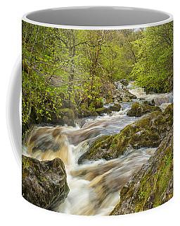 Aira Force Coffee Mug