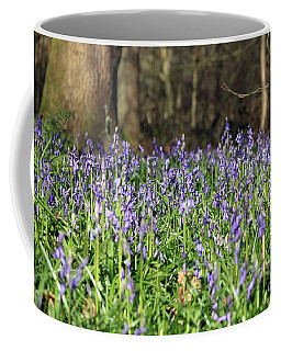 Bluebells At Banstead Wood Surrey Uk Coffee Mug