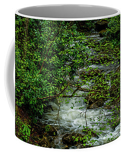 Coffee Mug featuring the photograph Kens Creek Cranberry Wilderness by Thomas R Fletcher
