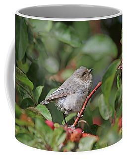 Bushtit Coffee Mug