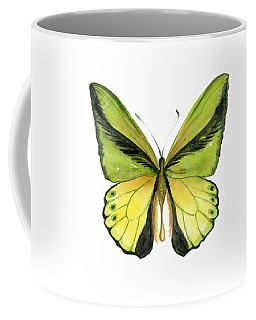8 Goliath Birdwing Butterfly Coffee Mug