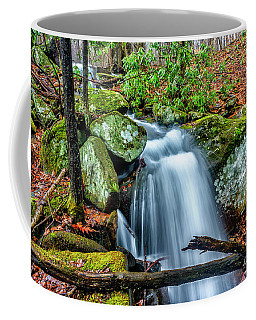 Coffee Mug featuring the photograph Little Laurel Branch by Thomas R Fletcher