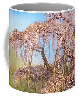 Coffee Mug featuring the photograph Miharu Takizakura Weeping Cherry08 by Tatsuya Atarashi