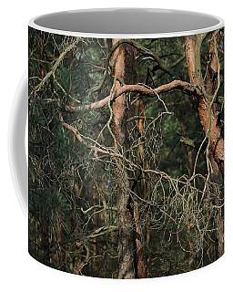 Pine Forest Coffee Mug by Dariusz Gudowicz