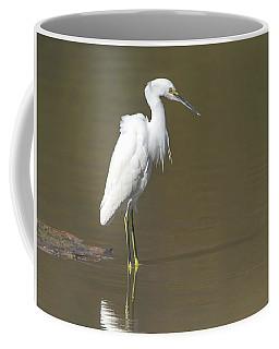 Snowy Egret Coffee Mug by Tam Ryan