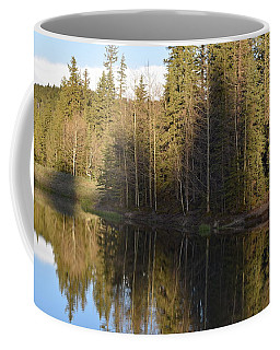 Shadow Reflection Kiddie Pond Divide Co Coffee Mug