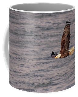 Coffee Mug featuring the photograph Bald Eagle by Peter Lakomy