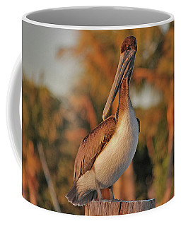 Coffee Mug featuring the photograph 9- Brown Pelican by Joseph Keane