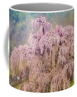 Coffee Mug featuring the photograph Miharu Takizakura Weeping Cherry09 by Tatsuya Atarashi