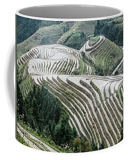 Terrace Fields Scenery In Spring Coffee Mug
