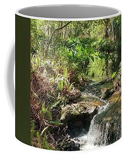 Hidden Brook Within Nature Coffee Mug