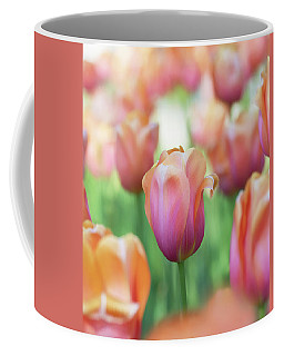 A Bed Of Tulips Is A Feast For The Eyes. Coffee Mug