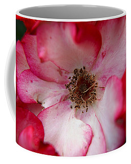 A Bee's Heaven Coffee Mug