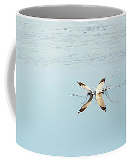 A Bird Catching Fish  Coffee Mug