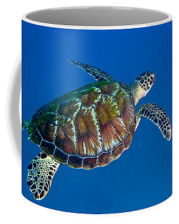 A Black Sea Turtle Off The Coast Coffee Mug