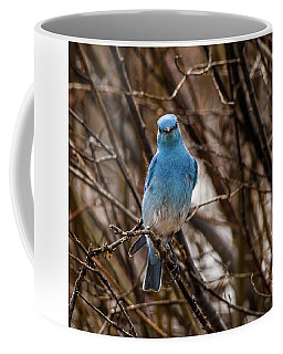 A Bluebird Hello Coffee Mug by Yeates Photography