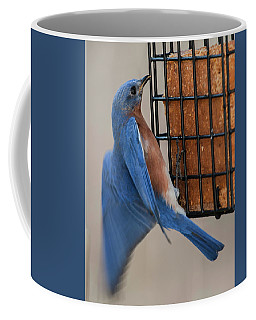 Coffee Mug featuring the photograph A Bluebird's Meal On The Wing by Jim Moore
