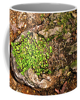 A Bowl Of Greens Coffee Mug