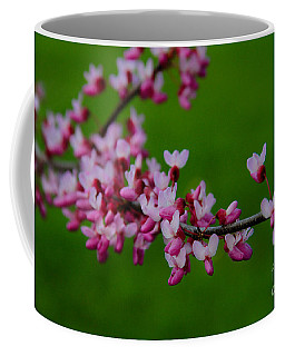 A Branch Of Spring Coffee Mug by Roger Becker