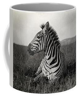 A Burchells Zebra At Rest Coffee Mug
