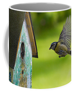A Busy Blue Tit Mum Coffee Mug