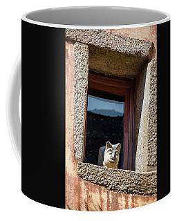 A Cat On Hot Bricks Coffee Mug