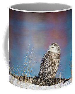 A Colorful Snowy Owl Coffee Mug