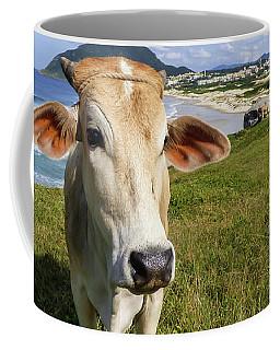 A Cow At The Beach Coffee Mug