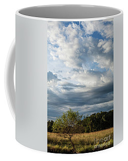 Coffee Mug featuring the photograph A Day In The Prairie by Iris Greenwell