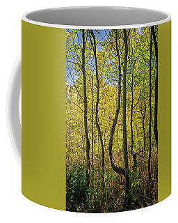 A Day In The Woods Coffee Mug