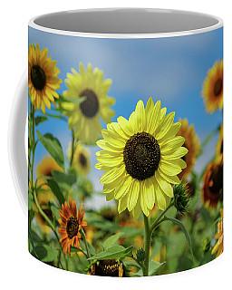 A Day With Sunflowers Coffee Mug