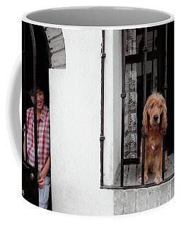 Coffee Mug featuring the photograph A Dogs Life In Mexico by Wayne King