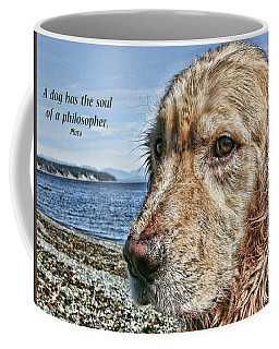 A Dog's Soul Coffee Mug by Rhonda McDougall