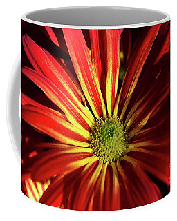 Coffee Mug featuring the photograph A Dose Of Color by Cindy Manero