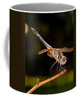 A Dragonfly Coffee Mug