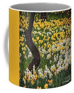 A Field Of Daffodils Coffee Mug by Mitch Shindelbower