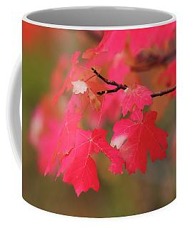 A Flash Of Autumn Coffee Mug