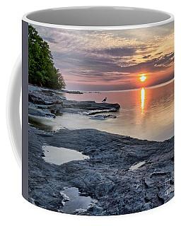 A Flat Rock Sunset With Seagull Coffee Mug