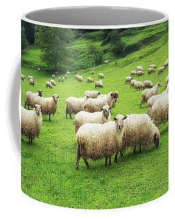 A Flock Of Sheep Coffee Mug