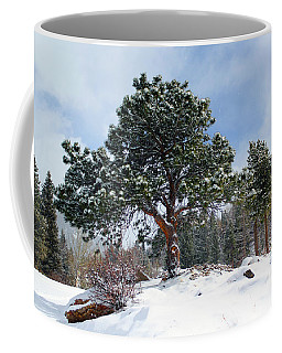 Coffee Mug featuring the photograph A Fresh Blanket Of Snow by Shane Bechler