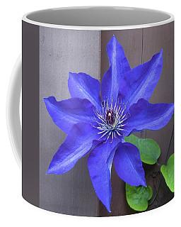 A Friend From Next Door Coffee Mug