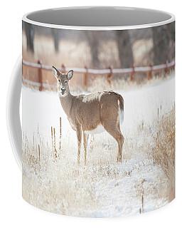 A Funny Looking Deer Coffee Mug