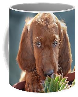 A Gardener Coffee Mug