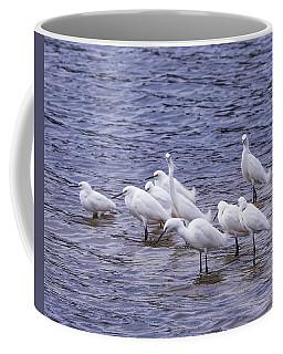 A Gathering Of Snowy Egrets Coffee Mug