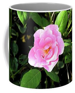 A Gentle Rose Coffee Mug