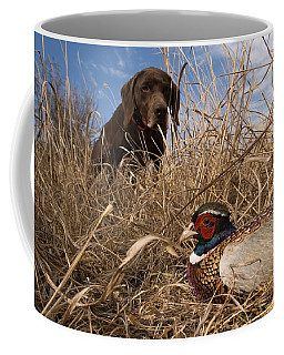 A German Shetland Finds A Ring Necked Coffee Mug